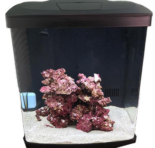 Coaralife nano reef tank image