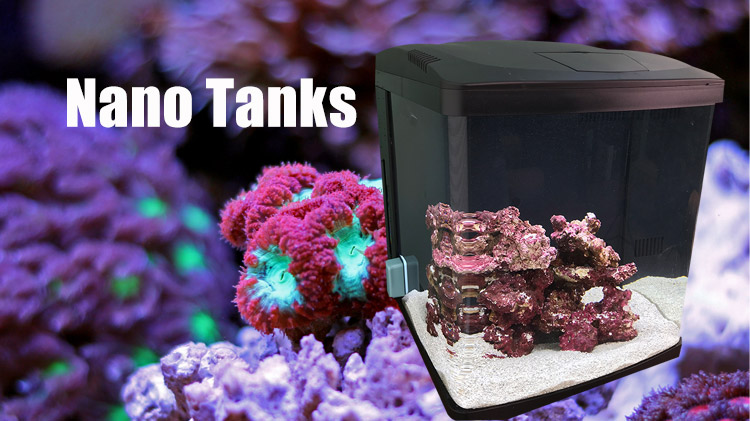 What is a nano reef fish tank?